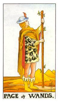 权杖侍从正位